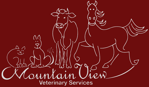 Mountain View Veterinary Services